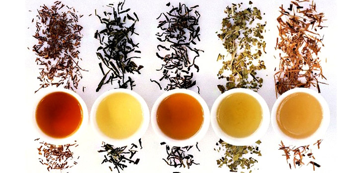 31 May 2006 --- Lapacho tea, mate tea, black and green tea, Rooibos tea --- Image by © Maximilian Stock Ltd/the food passionates/Corbis